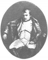 Александр Трачевский -Наполеон I. Его жизнь и государственная деятельность