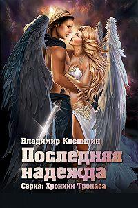 Владимир Клепилин -Последняя надежда