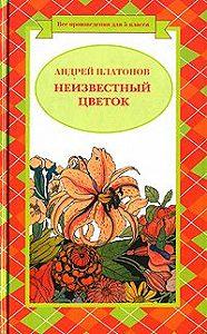 Андрей Платонов -Разноцветная бабочка (легенда)