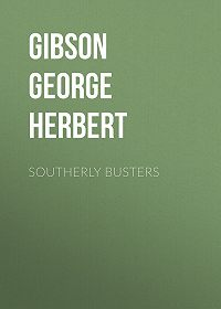 George Gibson -Southerly Busters