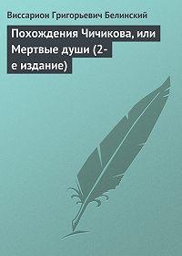 В. Г. Белинский -Похождения Чичикова, или Мертвые души (2-е издание)