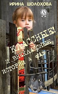 Ирина Шолохова - Классные! И внеклассные истории 4 «А»