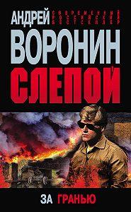 Андрей Воронин -Слепой. За гранью