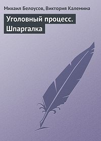 Михаил Белоусов -Уголовный процесс. Шпаргалка