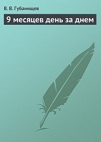 В. Губанищев - 9 месяцев день за днем