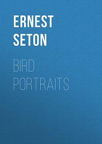 Ernest Seton -Bird Portraits