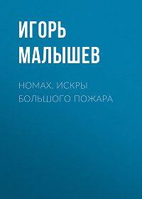 Игорь Малышев -Номах. Искры большого пожара