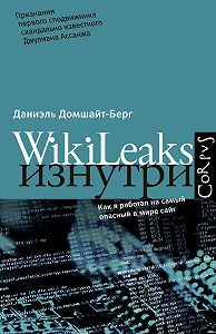 Даниэль Домшайт-Берг -WikiLeaks изнутри