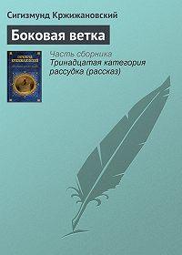 Сигизмунд Кржижановский - Боковая ветка
