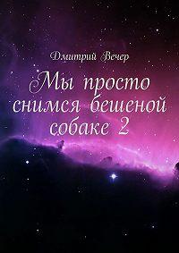 Дмитрий Вечер - Мы просто снимся бешеной собаке2