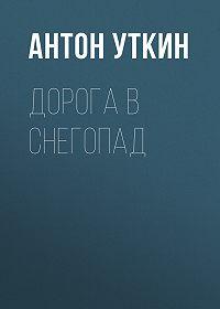 Антон Уткин -Дорога в снегопад