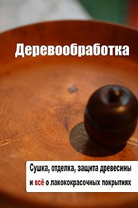 Илья Мельников -Сушка, защита, отделка древесины и все о лакокрасочных покрытиях
