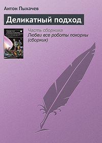 Антон Пыхачев -Деликатный подход
