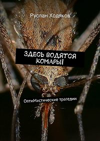 Руслан Ходяков -Здесь водятся комары!