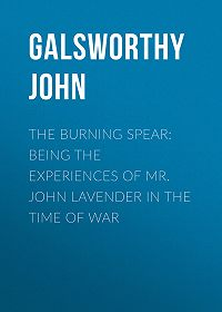 John Galsworthy -The Burning Spear: Being the Experiences of Mr. John Lavender in the Time of War