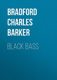 Charles Bradford -Black Bass