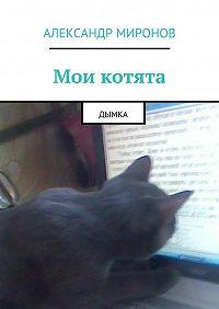 Александр Миронов -Мои котята. Дымка