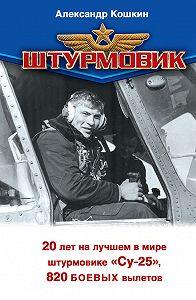 Александр Кошкин -Штурмовик