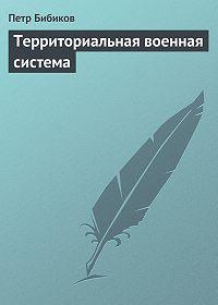 Петр Бибиков - Территориальная военная система