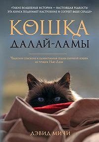 Дэвид Мичи -Кошка Далай-Ламы. Чудесное спасение и удивительная судьба уличной кошки из трущоб Нью-Дели