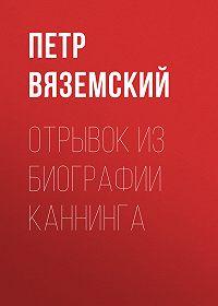 Петр Андреевич Вяземский -Отрывок из биографии Каннинга