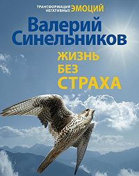 Валерий Синельников - Жизнь без страха