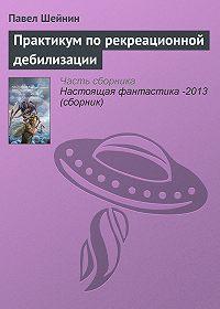 Павел Шейнин - Практикум по рекреационной дебилизации