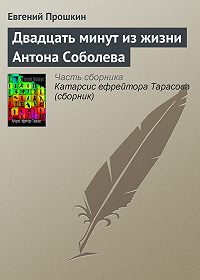 Евгений Прошкин -Двадцать минут из жизни Антона Соболева