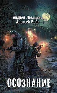 Андрей Левицкий, Алексей Бобл - Осознание