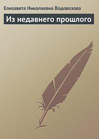 Елизавета Водовозова -Из недавнего прошлого