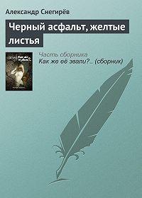 Александр Снегирёв -Черный асфальт, желтые листья