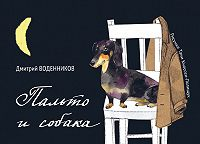 Дмитрий Воденников -Пальто и собака (сборник)