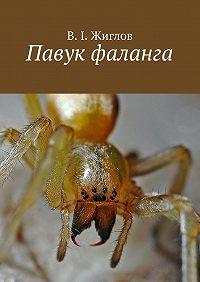 В. Жиглов -Павук фаланга