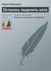 Мария Воронова -Осталось поделить кота