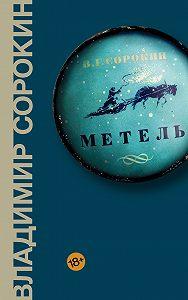 Владимир Георгиевич Сорокин -Метель
