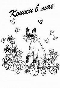 Дорин Тови -Кошки в мае