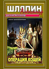 Александр Шляпин -Операция Кощей