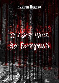Никита Плиско -2163 часа до безумия