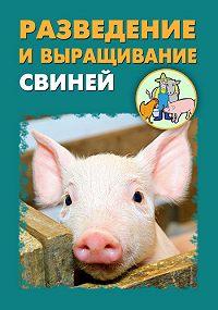 Илья Мельников -Разведение и выращивание свиней