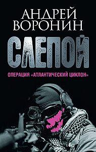 Андрей Воронин - Слепой. Операция «Атлантический циклон»