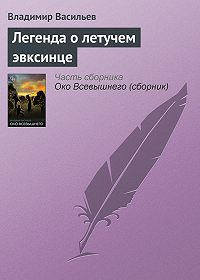 Владимир Васильев - Легенда о летучем эвксинце