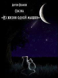 Антон Волков -Из жизни одной мышки