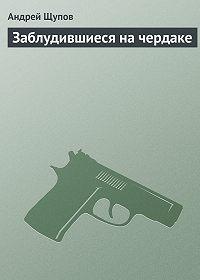 Андрей Щупов - Заблудившиеся на чердаке