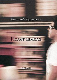 Анатолий Курчаткин -Полёт шмеля