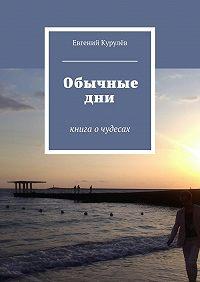 Евгений Курулёв -Обычные дни. книга очудесах