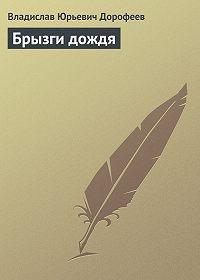 Владислав Дорофеев -Брызги дождя