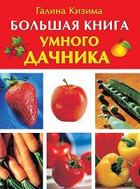 Галина Кизима -Большая книга умного дачника
