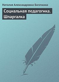 Наталия Александровна Богачкина -Социальная педагогика. Шпаргалка