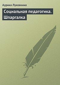 Аурика Луковкина - Социальная педагогика. Шпаргалка