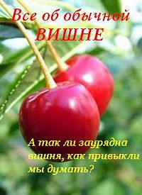 Иван Дубровин -Все об обычной вишне